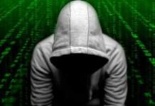 top 10 best grey hat hackers