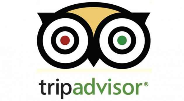 Trip Advisor Best Travel Apps For Android, iPhone
