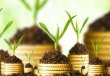 How To Invest Your Money: Innovative Ideas To Get Returns On Investments