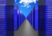 Which Hosting Should You Choose - Shared or Reseller?