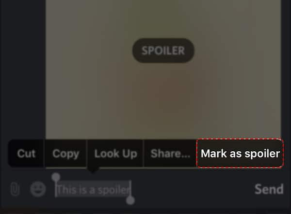 Method 2: Using Spoiler Markdown Command (for PC and smartphones)