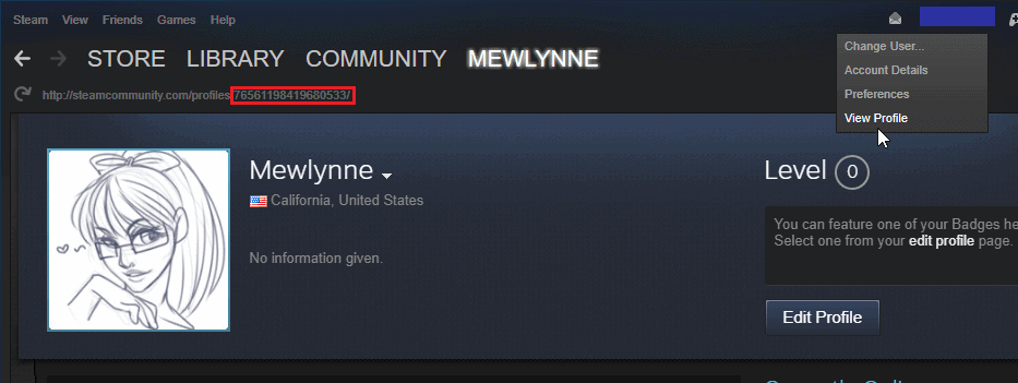 How to get the User ID and Game ID?