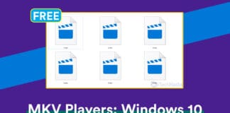 Top 10 Best Free MKV Video Players For Windows 10