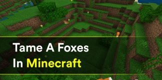 How To Tame A Foxes In Minecraft