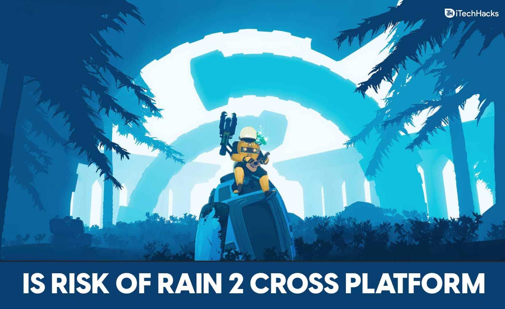 Is Risk Of Rain 2 Cross-Platform?